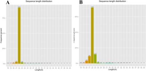 Length distribution of small RNAs identified from the LTM (A) and RPT (B) of sea cucumber (A. japonicus).