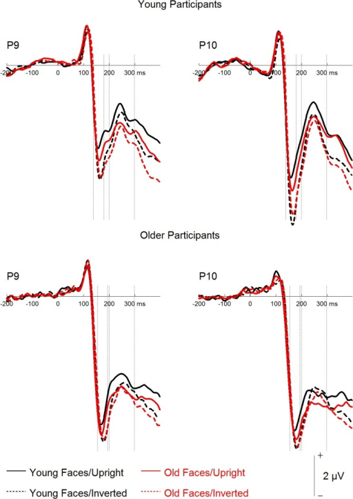 Grand mean event-related potentials depicting the factors face age and orientation for young and older participants.