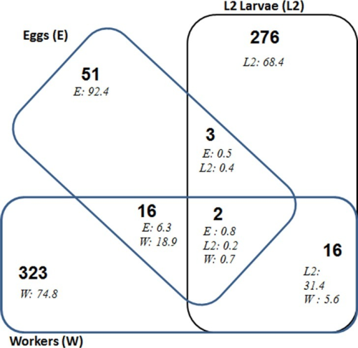 Venn diagram of bacterial OTUs (at 97% identity) common to the pyrosequencing libraries for eggs (E), L2 larvae (L2) and workers (W) of N. arborum.Numbers in bold indicate the number of OTUs and numbers in italics the relative abundance of the corresponding OTUs in each stage where they are detected. Details of the common OTUs are given in S2 Table.