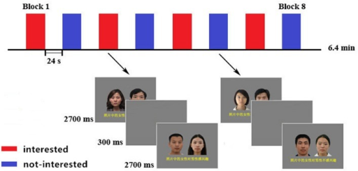 Compound images and Procedure of the fMRI experiment. Block design with four blocks for each condition. Each block contained eight compound images of the same type. Two kinds of blocks were alternated between each other, with the order of the blocks counterbalanced across participants. A black fixation cross appeared in the center of the screen during the 24-s pre-block rest periods.