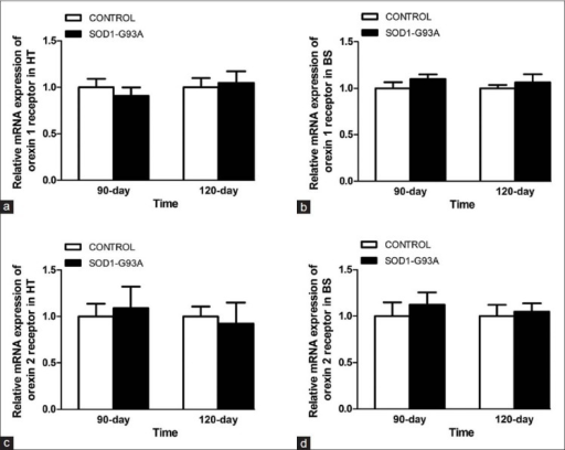 mRNA levels of orexin receptors. Q-PCR of orexin-1 receptor mRNA show no significant difference in the hypothalamus (a) and brain stem (b) of the 90 and 120 days SOD1-G93A transgenic mice than controls. No significant difference is found in orexin-2 receptor mRNA in the hypothalamus (c) and brain stem (d) of the 90 and 120 days SOD1-G93A transgenic mice than controls. HT: Hypothalamus; BS: Brain stem; PCR: Polymerase chain reaction.