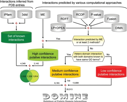 A schematic overview of the DOMINE database.