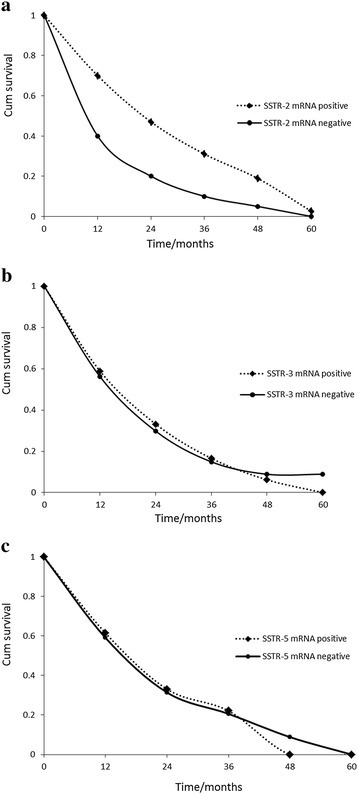 Overall survival according toSSTR-2,SSTR-3,SSTR-5mRNA expression in pancreatic cancer patients. (a) Overall survival according to SSTR-2 mRNA expression in pancreatic cancer patients. (b) Overall survival according to SSTR-3 mRNA expression in pancreatic cancer patients. (c) Overall survival according to SSTR-5 mRNA expression in pancreatic cancer patients.