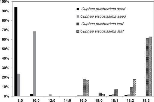 Fatty acid composition of seeds and leaves in Cuphea pulcherrima and Cuphea viscosissima. Fatty acids were extracted from leaves and seeds of C. pulcherrima and C. viscosissima and analysed using gas chromatography. Values are the means ±SD from five biological replicates.