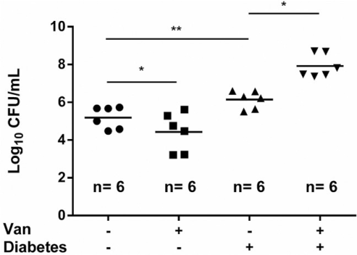 Vancomycin plays a different role in bladder catheter biofilm formation between healthy and diabetic rats.Determination of the number of viable biofilm-bound bacteria in the bladder catheters removed from healthy/diabetic rats infected with VRSA SJC1200 in the absence/presence of vancomycin treatment. Six rats were used in each group.