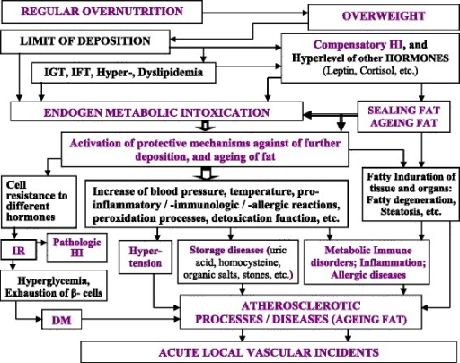 The conception of ontogenetic evolution of Atherosclerosis because of ageing of body fat. Abbreviations: DM, diabetes mellitus; HI, hyperinsulinemia; IFT, Impaired fat tolerance; IGT, Impaired glucose tolerance; IR, insulin resistance