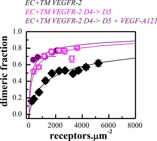 Dimerization curves for the wild-type VEGFR-2 in the absence of ligand, the D4→D5 mutant in the absence of ligand, and the D4→D5 mutant in the presence of VEGF-A121.DOI:http://dx.doi.org/10.7554/eLife.13876.014