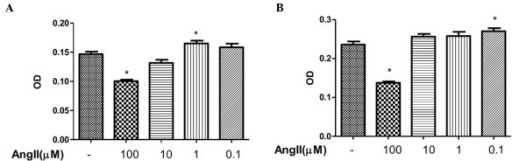 Effects of different concentrations of Ang II on cell proliferation in CFs. (A) Neonatal rat CFs were treated with different concentrations of Ang II for 24 h. (B) CFs were treated with different concentration of Ang II for 48 h. Data are presented as the mean ± standard error of the mean. *P<0.05, compared with the non-Ang II-treated group. CFs, cardiac fibroblasts; Ang II, angiotensin II; OD, optical density.
