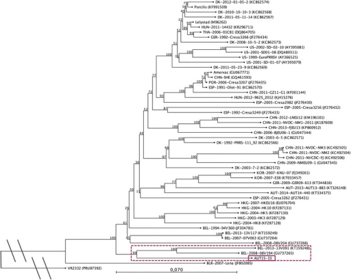 Phylogenetic analysis based on ORF2-7 nucleotide sequences of 52 PRRSV-1 strains and PRRSV-2 prototype VR2332 as an out-group. The PRRSV strain presented in this study is marked with a solid box and the associated sub-tree is highlighted with a dotted box. The tree was constructed with the software CLC Sequence Viewer 7.6 (CLCBIO, Aarhus, Denmark) using the neighbour joining method with the numbers at the nodes representing bootstrap values in % of 1000 replicates. The ORF2-7 sequence of AUT15-33 was submitted to GenBank with provisional entry KU494019. Scale bar: number of substitutions per site