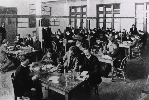 <p>Medical students at work at their lab tables in the physiological laboratory.</p>