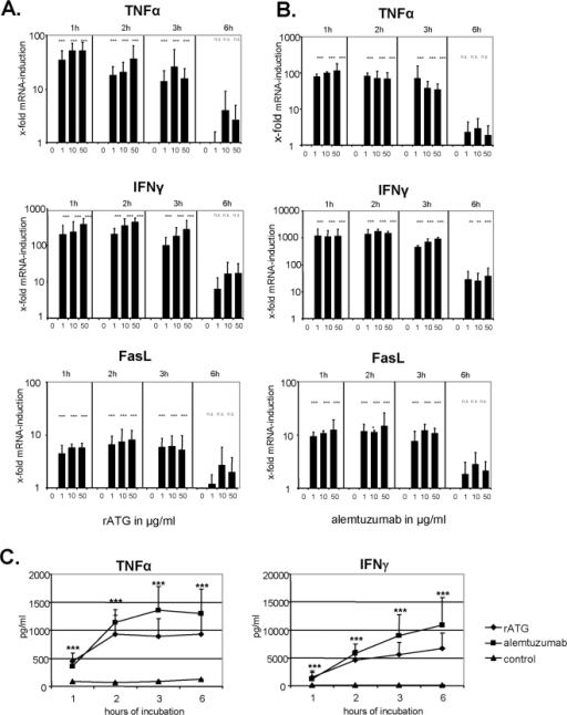 Rabbit ATG and alemtuzumab increase FasL, TNFα and IFNγ mRNA in NK cells.(A) IL-2 (200 IU/ml) pre-activated NK cells cultured in the presence of rATG were analyzed for FasL, TNFα and IFNγ mRNA after 1, 2, 3 and 6 hours of co-culture. rATG induced a rapid and dose-dependent induction of FasL, TNFα and IFNγ mRNA in NK cells which decreased after 6 hours of co-incubation. (B) Similar to rATG, the application of alemtuzumab results in a rapid FasL, TNFα and IFNγ mRNA induction within the first hour of co-incubation. Values demonstrate the results relativized to untreated controls (2−ΔΔct) and are displayed as means of six independent experiments. Asterisks (*) indicate significant values compared to untreated controls: **p<0.01, ***p<0.001. (C) Induction of cytokines by rATG and alemtuzumab (10 µg/ml) was further confirmed for TNFα and IFNγ at the protein level, illustrating a significant induction over time. Asterisks (*) indicate significant values: ***p<0.001 compared to untreated controls.