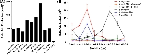 sdh activity Inhibition of mitochondrial function in isolated rat required to inhibit mitochondrial activity of succinate oxidase (sdh) in rat liver mc and clotrimazole di.