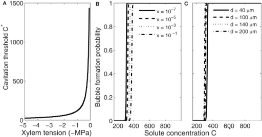 Dependence of the threshold solute concentration for bubble formation via gas segregation on xylem water tension (A), freezing velocity (B), and conduit diameter (C). Xylem water tension determines the concentration at which bubble formation becomes likely, but whether that concentration is obtained during freezing depends on freezing velocity and conduit size (Pe; see Figure 2). (B,C) Show that slightly higher concentrations are needed for bubble formation become likely in small than in large conduits (Eq. 9) and if the time allowed for nucleation to take place is short (high freezing velocity, see Eq. 18). Here the initial gas concentration was set to saturation and C* values presented concentrations above saturation.