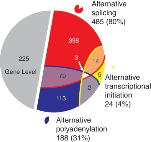 Number of genes with ASE patterns in the breast cancer data classified into different categories. Similar as Figure 4; a total of 830 genes were included that could be classified using our approach (see 'Materials and Methods' section).