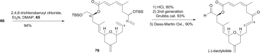 Jenning's total synthesis of (–)-dactylolide.