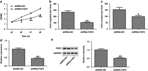 Fibroblast growth factor 2 (FGF2) inhibition resulted in similar effects as microRNA-152 (miR-152) overexpression. (a) The viability of A549 cells transfected with FGF2 or control short hairpin RNAs (shRNAs) was detected using CCK-8. (b) In vitro migration. (c) In vitro invasion. (d) Expression of FGF2 mRNA was detected by quantitative real-time PCR (qRT-PCR) in A549 cells transfected with shRNA-NC or shRNA-FGF2. (e) FGF2 protein levels were detected by western blot analysis in A549 cells transfected with FGF2 or control shRNA. *P<0.05, **P<0.01 vs control.