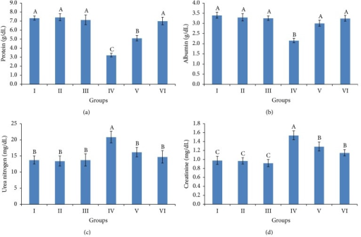Serum total protein (a), albumin (b), urea nitrogen (c), and creatinine (d) levels of weanling female rats exposed to cypermethrin for 28 days and the protective effect of ethanolic extract of grape pomace (100 and 200 mg/kg b.wt.). The values represented are the means ± S.D. Means having the same letters are not significantly different from each other, P ≤ 0.05. Groups: control (I), grape pomace extract at 100 mg/kg b.wt. (II), grape pomace extract at 200 mg/kg b.wt. (III), cypermethrin (IV), cypermethrin and grape pomace extract at 100 mg/kg b.wt. (V), and cypermethrin and grape pomace extract at 200 mg/kg b.wt. (VI).