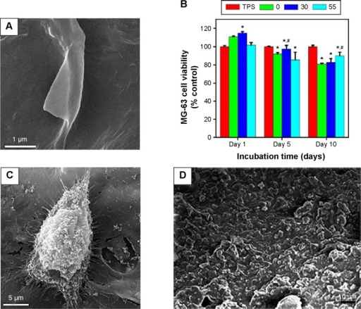 Effect of carbon nanostructures on the performance of electrodeposited polysaccharide coatings on Ti foils.Notes: (A) SEM image of CS/GO (30 wt%) coating.113 (B) MTT viability and (C) SEM morphology of MG-63 cells cultured on the surface of the CS/GO coating. (D) A SEM image of alginate/BG/ND film. Copyright © 2013. Elsevier B.V. Reproduced from Mansoorianfar M, Shokrgozag MA, Mehrjoo M, Tamjid E, Simchi A. Nanodiamonds for surface engineering of orthopedic implants: enhanced biocompatibility in human osteosarcoma cell culture. Diam Relat Mater. 2013;40(0):107–114.53 (E) Formation of apatite phases on the surface of the alginate coating after 28 days of incubation in the SBF and (F) its MG-63 cell viability response. (G) The antibacterial performance of the CS/GO coating containing vancomycin against Staphylococcus aureus. Insets: plate counting images showing S. aureus bacteria colonies after 120 min incubation for the CS-30GO film containing (a) 0, (b) 0.5 and (c) 1 g/l antibiotics. (H) Cumulative drug release of the CS/GO (30 wt%) coating. Copyright © 2015. Elsevier B.V. Reproduced from Ordikhani F, Ramezani Farani M, et al. Physicochemical and biological properties of electrodeposited graphene oxide/chitosan films with drug-eluting capacity. Carbon. 2015;84(0):91–102.113 *Denotes significant difference between TPS and EPD coatings (P<0.05). #Denotes significant difference between CS and composite coatings (P<0.05).Abbreviations: SEM, scanning electron microscope; CS, chitosan; GO, graphene oxide; BG, bioactive glass; ND, nanodiamond; SBF, simulated body fluid; TPS, tissue culture polystyrene; EPD, electrophoretic deposition; MTT, 3-(4,5-Dimethylthiazol-2-Yl)-2,5-Diphenyltetrazolium Bromide.