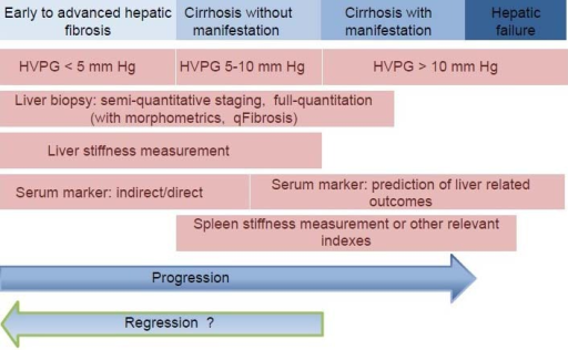 Application of the current technologies for assessing hepatic fibrosis at different stages of CLD (HVPG: Hepatic vein pressure gradient; CLD: Chronic liver disease).