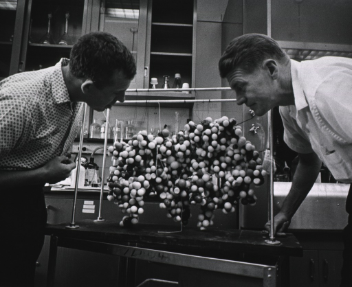<p>Profile shot of Dr. Christian B. Anfinsen in a laboratory viewing a molecular model of ribonuclease together with a colleague.   Dr. Anfinsen was the head of the National Heart Institute's Laboratory of Cellular Physiology.</p>