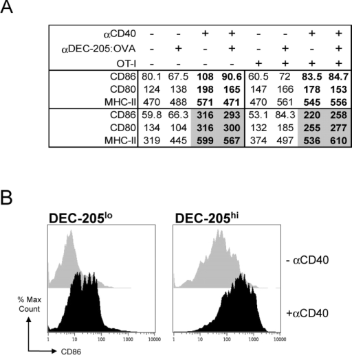 Maturation of DCs in vivo by agonistic αCD40 but not by αDEC-205:OVA. (A) C57BL/6 mice were injected subcutaneously with PBS or 4.0 μg (1.0 μg/footpad) of αDEC-205:OVA conjugate with or without αCD40 (100 μg FGK45.5 subcutaneously), 1 and 3 d before sacrifice. CD11c+ cells were sorted by MACS® from lymph nodes and evaluated by flow cytometry for expression of CD80, CD86, and MHC class II. Prior to injection of the OVA conjugate and αCD40, the mice were given PBS (−) or OT-I (+) cells. The bold symbols are mean fluorescence indices of the CD11c+ cells in the presence of a maturation stimulus, while the gray-bold at day 3 indicate a significant increase, consistent with maturation. (B) Illustrative FACS® data showing the maturation of the DEC-205hi CD11c+ cells and DEC-205loCD11c+ cells, in mice treated 3 d before with PBS and αCD40 as in panel A.