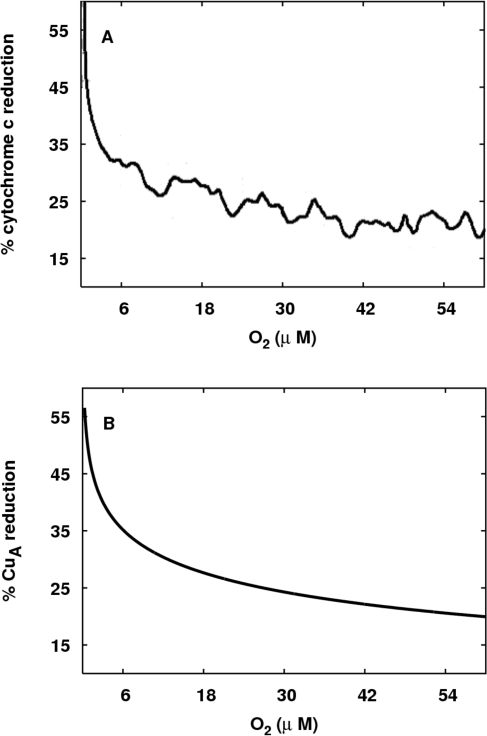 Comparison of experimentally measured and modelled CCO redox states.(A) How the level of reduction of cytochrome c varies with oxygen                            concentration (redrawn from Figure 5A of [20]). (B) The                            equivalent data for CuA from model simulations is presented.                            For the simulation, the reducing substrate is set to be succinate, and                            the demand parameter u is set to be low                            (u = 0.4) to represent                            a high phosphorylation potential.