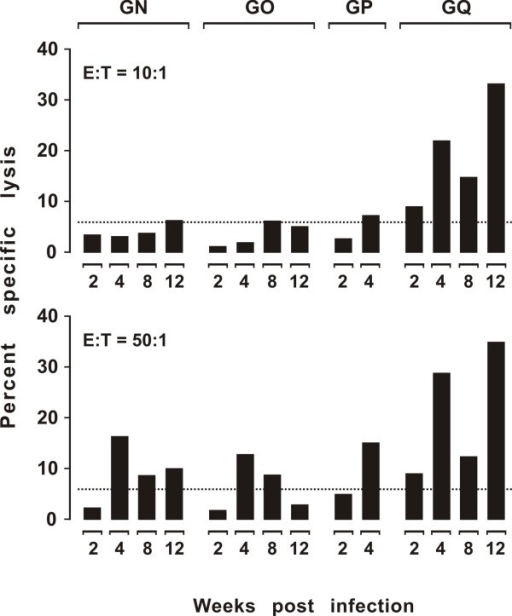 Env-specific CTL activity in acutely FIV infected cats. The PBMCs were obtained at the indicated times post-infection and used as effector cells without ex vivo restimulation. The dotted line indicates the cut-off value. Cat GP died 40 days post inoculation due to unexplained renal failure.