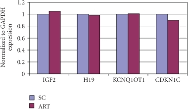 Gene expression of placental tissue. ART versus SC in AFD birth weight cases. ART: assisted reproductive technology. SC: spontaneous conception. AFD: appropriate-for-date. Results of gene expression analysis compared with the endogenous control GAPDH. In AFD birth weight cases, gene expression patterns were similar in both the ART and SC groups.