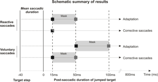 "Schematic representation of the results.This schema represents the differences in error signal processing between saccade categories and between adaptation and corrective saccade generation. Each square indicates the minimal target duration leading to optimal adaptation or to optimal generation of corrective saccades, for both saccade categories. The shading of the square represents the masking condition in which this target duration is required: grey square for the mask condition and black square for the no-mask condition (bicolour square when the same target duration is required in both masking conditions). The grey rectangles ""Mask"" symbolise the fact that when the mask is presented, a longer duration of stepped target is necessary to induce optimal adaptation and corrective saccade generation."