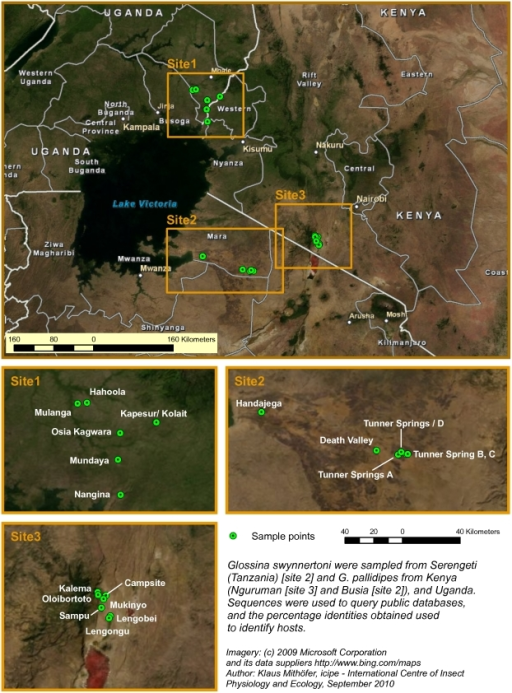 A map showing georeferenced sites where tsetse flies were trapped in Kenya, Tanzania and Uganda.A Google Earth map is also available (http://www.icipe.org/images/stories/downloads/muturi_et_al_figure1.zip.zip).
