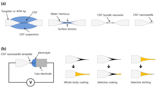 Schematic diagram of the nanoneedle fabrication process. (a) A carbon nanotube nanoneedle using dielectrophoresis and (b) a functional material-coated micro- or nanoneedle using electrodeposition.