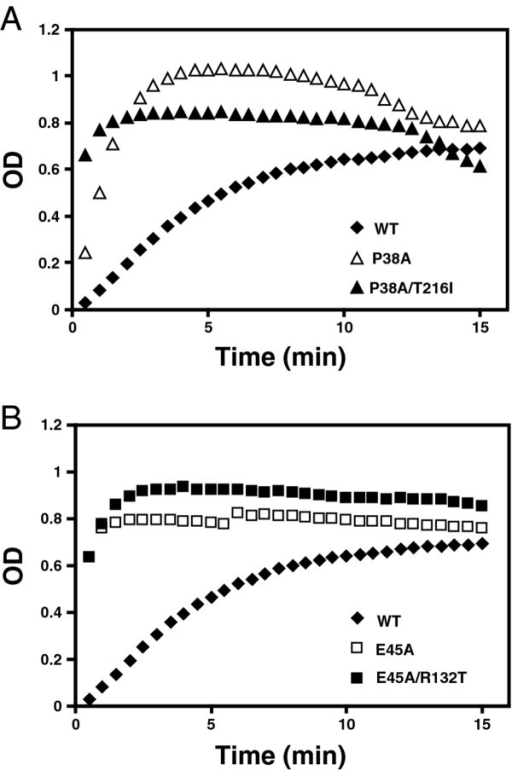 In vitro capsid assembly analysis. To initiate assembly, purified recombinant CA proteins were diluted into a buffer, resulting in a final NaCl concentration of 2.25 M. The turbidity of the samples was determined with a spectrophotometer at the indicated times. For reference, the results for the wild type CA protein are shown in both panels A and B. Values shown are the average of two parallel determinations. Shown are data from one representative of 3 independent experiments.