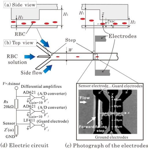 (a) and (b) schematics of the microchannel and electrodes of the sensor used in the experiment; (c) photograph of the electrodes used in the experiment; (d) schematic of the sensor electric circuit.