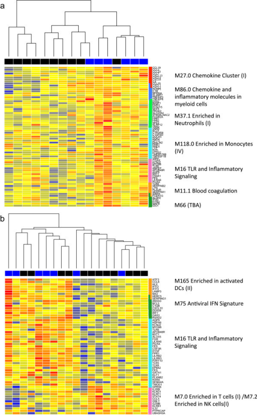 Heatmaps of BTMs associated with a higher response to vaccination. Heatmaps show expression of genes for MVA85A-vaccinated infants in unstimulated PBMC taken pre-vaccination (a) or whole blood taken one day post-vaccination (b). The colour coding along the top of the heatmap shows responder (blue) and non-responder (black) infants as measured by IFN-γ ELISpot. Genes are arranged by module (right).