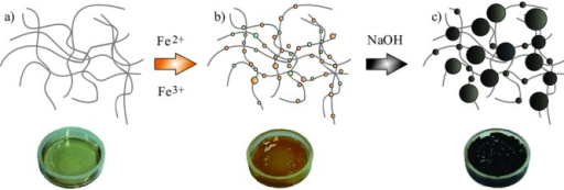 Schematic representation of the ferrogel synthesis. a) Unloaded gelatin hydrogel, b) hydrogel loaded with ferrous and ferric ions, and c) magnetic nanoparticles distributed inside the hydrogel after in situ co-precipitation with NaOH.