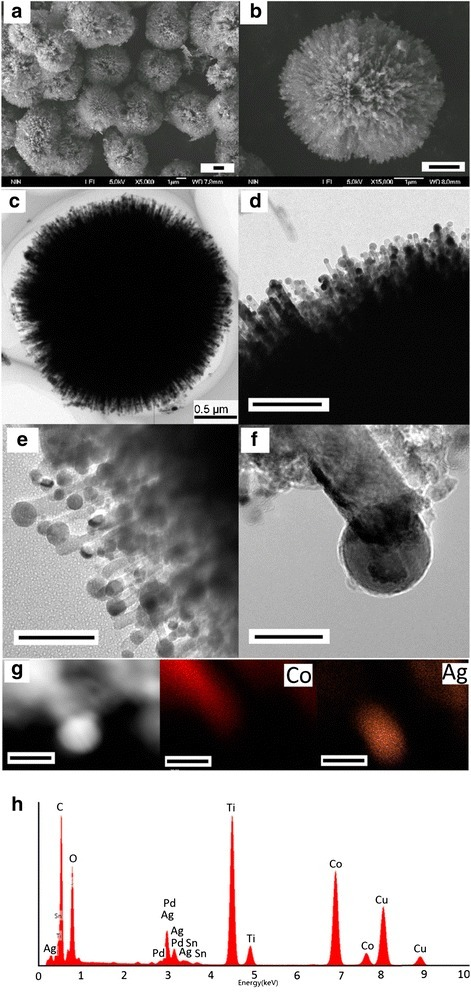 Typical morphology, structure, and composition of the hierarchical Co@Ag/TiO2. SEM images (a, b), TEM images (c, d), and high-resolution TEM images (e, f), the local elemental mapping (g), and corresponding EDX spectra of the nanoparticles on the tips of TiO2 nanorods (h) for the 3D urchin-like hierarchical Ag@Co/TiO2 nanostructures. (Scale bar = 1 μm for (a-b); scale bar = 500 nm for (c); scale bar =200 nm for (d); scale bar = 100 nm for (e); scale bar = 20 nm for (f-g)).