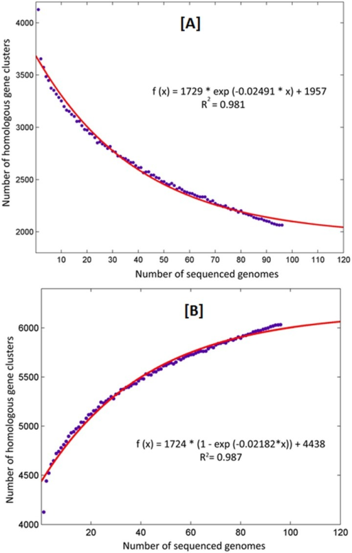 Core and accessory genome size evolution.(A) Each point indicates the number of HGCs conserved in a genome. The red line indicates an exponential decay function based on the median values of core HGCs when each time a new genome is added to the analysis. (B) Accessory genome of MTBC. The MTBC has an open pangenome model.