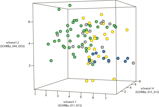 3D scatterplot for the cultivar series examined from the Australian and Brazilian breeding programmes. Green, RB series from RIDESA, Brazil; yellow, SP series from CTC (Centro de Technologia Canaveira); Brazil; grey, Q canes from SRA (Sugar Research Australia), Australia; blue, F series, a population from RIDESA, Brazil. The RB series formed a distinct cluster apart from the other cultivars.