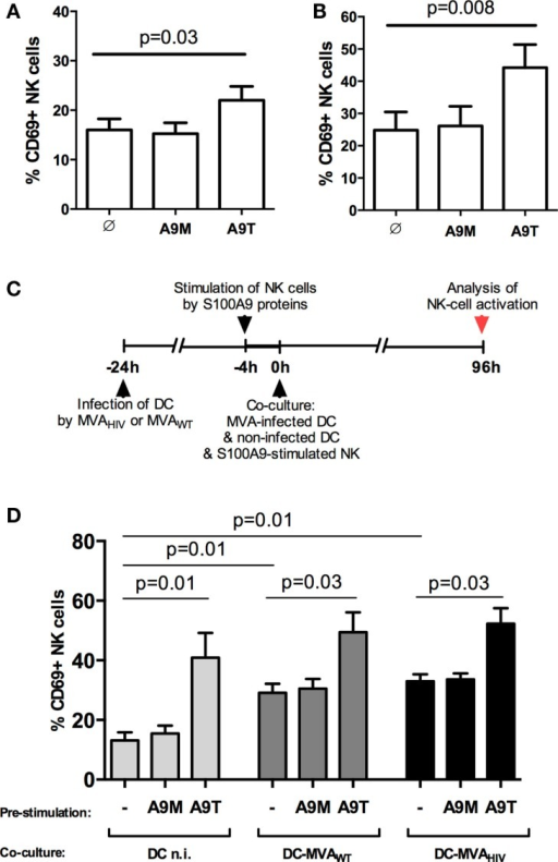 S100A9 tetramers enhance NK-cell activation. (A) Purified NK cells were stimulated by S100A9 tetramers or S100A9 monomers at 1 μg/ml during 4 h, then CD69 expression was assessed; graph shows cumulative results from five independent experiments. (B) Purified NK cells were stimulated by S100A9 tetramers or S100A9 monomers at 1 μg/ml during 4 days, then CD69 expression was assessed; graph shows cumulative results from seven independent experiments. (C) Schema depicts the protocol used in (D), in brief: DCs were infected or not by MVAWT or MVAHIV, and 24 h later non-infected DCs and S100A9-stimulated NK cells were added to the culture; finally, 96 h (4 days) later, CD69 expression on NK cells was analyzed. (D) Graph shows cumulative results from five independent experiments. Results are expressed as mean ± SE and p values are shown. A9M, S100A9 monomer; A9T, S100A9 tetramer; DCn.i., non-infected DC; DC-MVAWT, MVAWT-infected DC; DC-MVAHIV, MVAHIV-infected DC.