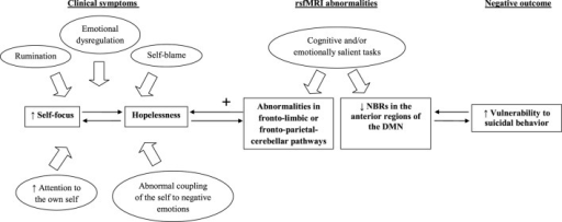 The relationship between fMRI abnormalities and vulnerability to suicidal behavior. Note: default mode network (DMN), negative blood oxygenation level-dependent responses (NBRs), resting-state functional magnetic resonance imaging (rsfMRI).