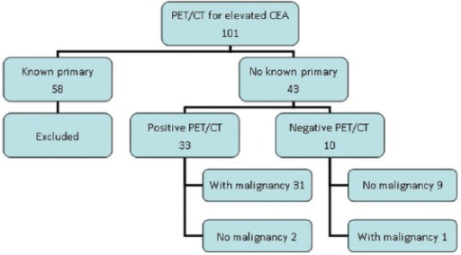Analysis of 101 patients with elevated CEA