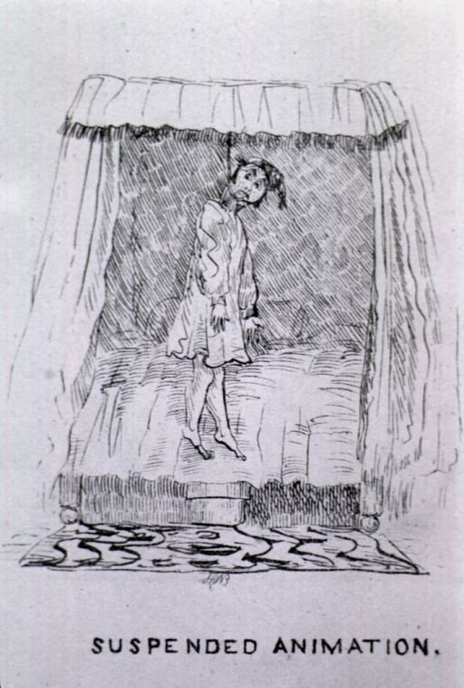 <p>A man hangs suspended from the canopy of a bed with a rope tied around his neck.</p>