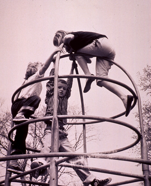 <p>Two girls and a boy are playing on a jungle gym.</p>