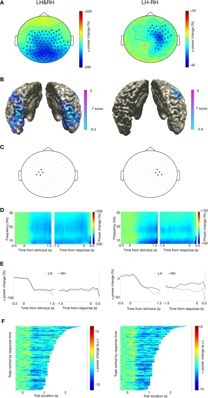 Alpha suppression during motor imagery of left and right hands. (A) Grand average of the topography of changes in power in the alpha band (8–12 Hz) between task and baseline (LH & RH, left panel) and between hands (LH-RH, right panel). Dots indicate clusters of significant differences (p < 0.05 corrected for multiple comparisons). (B) Source reconstruction of the changes in power in the alpha band between task and baseline (left panel) and between hands (right panel). The power of the source representation is thresholded at half-maximum. (C) Outline of a group of sensors overlying left and right motor cortex that were selected for subsequent analysis. (D) Grand-averaged time-frequency representation of power over left motor cortex (left panel) and right motor cortex (right panel). The time-frequency plots have been aligned to the presentation of the visual stimulus (time = 0, left panel) or to the button-press (time = 0, right panel). (E) Grand-averaged power in the alpha band, plotted separately for trials showing drawings of left and right hands [LH, RH, respectively; other conventions as in (D)], for the left motor cortex (left panel) and right motor cortex (right panel). (F) Relationship between trial duration and alpha suppression. Alpha-band power for single trials (sorted by reaction time, time = 0 corresponds to visual stimulus presentation) is plotted against trial duration, for one representative subject and for the sensor selections as outlined in (C). Power values were smoothed over 10 trials windows.