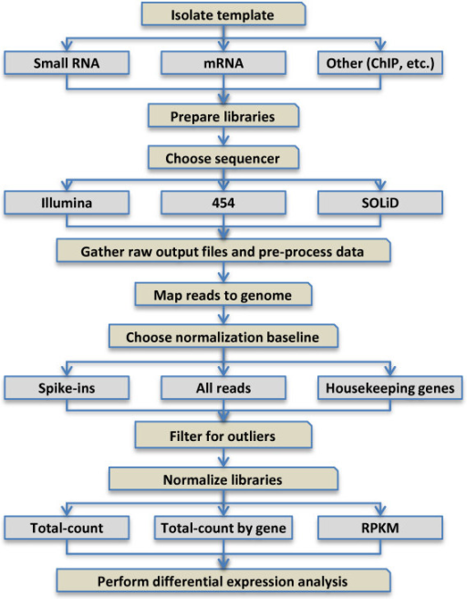 Flowchart Of Typical Data Handling Steps For Small Rna Open I