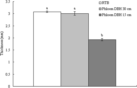 The comparison of RTB body thickness and two size host-phloem thickness.Bars indicate standard errors and different letters on bar indicate significant differences at p≤0.05 with Bonferroni Multiple Comparison (ANOVA).