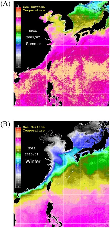 Map showing the mean SST images of the East Asian continental shelf in summer (July 2009) (A) and winter (January 2010) (B).The image was obtained using the National Oceanic and Atmospheric Administration AVHRR sensor data.