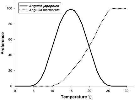 Water temperature preferences for A. japonica and A. marmorata recruitments.