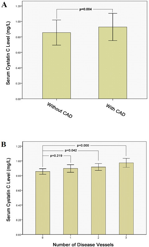 Serum cystatin C levels between MetS patients with asymptomatic CAD (n = 136) and those without CAD (n = 75) (A). CAD, coronary artery disease; MetS, metabolic syndrome. Comparison of serum cystatin C levels according to the number of stenotic coronary arteries (n = 75, 40, 56, 40, respectively, in 0, 1, 2and 3 stenotic vessels group)(B).