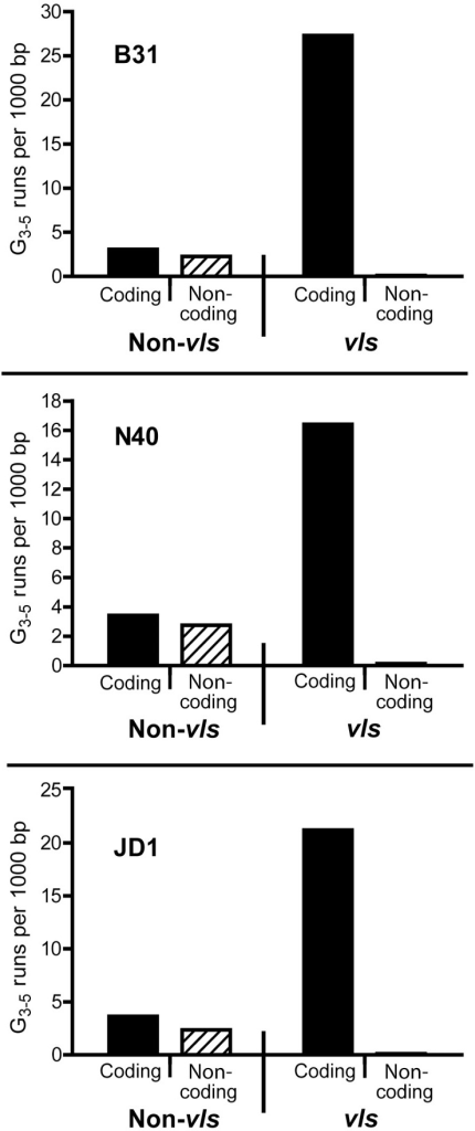 Distribution of G3–5 runs on the linear plasmids carrying the vls loci in B. burgdorferi strains B31, N40 and JD1.G runs of 3–5 nucleotides in length were counted in the sequence of lp28-1 (Accession NC_001851 and FJ472338) from B31 [8], [52], [53], lp36 (Accession CP002230) from N40 and lp28-1 (Accession NC_017404) of JD1 [36]. The distribution of G3–5 runs on both strands of vls and non-vls DNA was plotted. The coding strand is defined as the strand in which the silent cassettes code for the VlsE protein. The vls DNA includes only the silent cassettes, as the vlsE sequence is only known for B31.